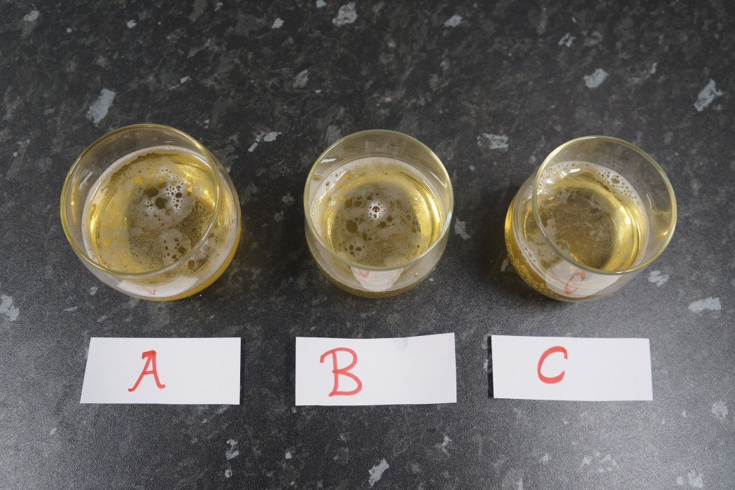 Triangle tasting the beers hopped at different temperatures